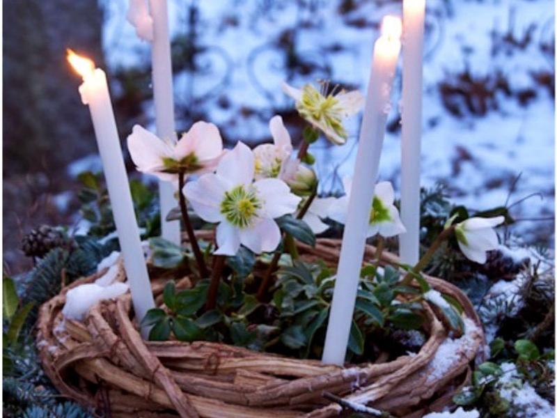 magické svíce a sněženky na svátek hromnice
